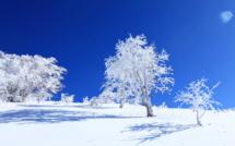 Il neige...snow kite en Corse